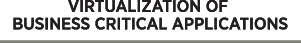 IT Solutions 2000 Ltd - Virtualizing Business Critical Applications
